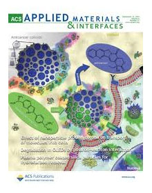 applied materials and interfaces in best nanotechnology journals at ninithi.com