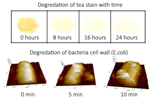 Self cleaning action and antimicrobial action in self cleaning cloths