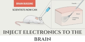 Scientists roll up and inject brain implants using a syringe (just like adrug)!