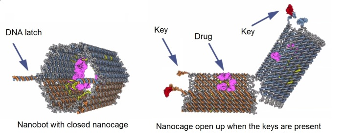 Drug delivery method of nanobot