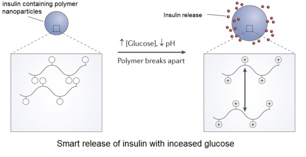 smart polymer insulin delivery for diabetes