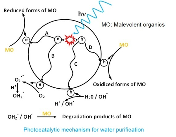mechanism of photocatalytic water purification